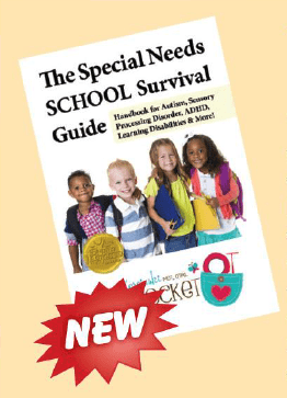 The Special Needs School Survival Guide