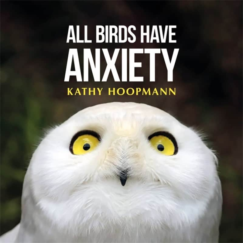 all-birds-have-anxiety